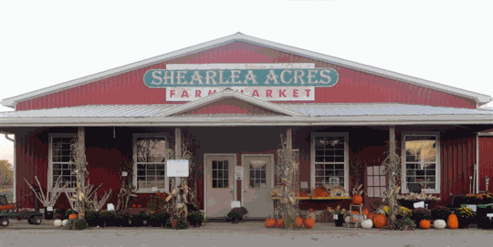 Shearlea Acres Farm Market